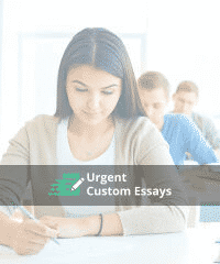 The Detailed Compare and Contrast Essay Template to Organize Your Work